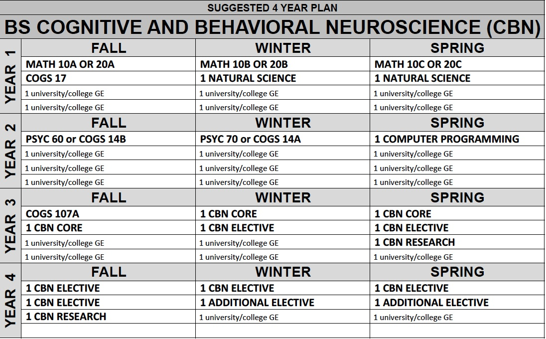 behavioral neuroscience Bs in behavioral neuroscience overview behavioral neuroscience is a new major in psychology at the university of kansas the concentration in behavioral neuroscience is designed for students with a focused interest in the biological bases of behavior.