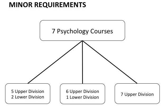 Psychology Minor Choices: 5 UD/2 LD, 6 UD/1 LD, or 7 UD classes
